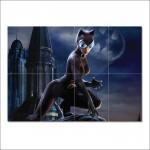 โปสเตอร์ ขนาดใหญ่ ภาพยนตร์ Catwoman แคตวูแมน Batman