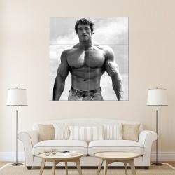 โปสเตอร์ ขนาดใหญ่ ภาพ นักเพาะกาย Arnold Schwarzenegger (P-0943)