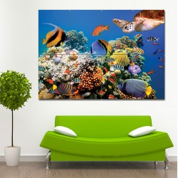 Aquarium fish  Block Giant Wall Art Poster (P-1447)