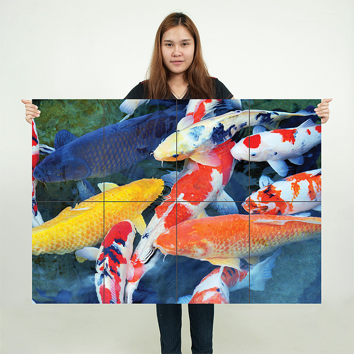 Koi fish block giant wall art poster for Giant koi fish