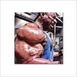 Dexter Jackson - biceps workout Kunstdruck Riesenposter