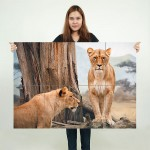 African Lioness Block Giant Wall Art Poster